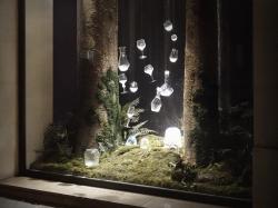 V8designers Saint Louis, Forêt magique  -